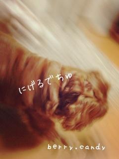 image_20130715094903.jpg
