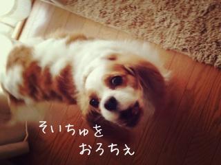 image_20130730162427b93.jpg