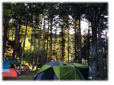 林間テント