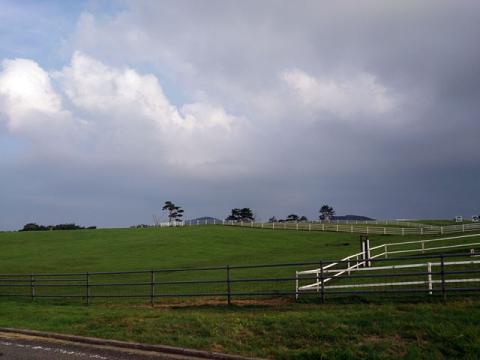 119大笹牧場