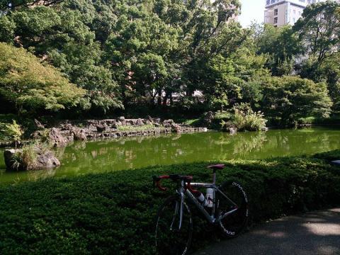 横浜公園1
