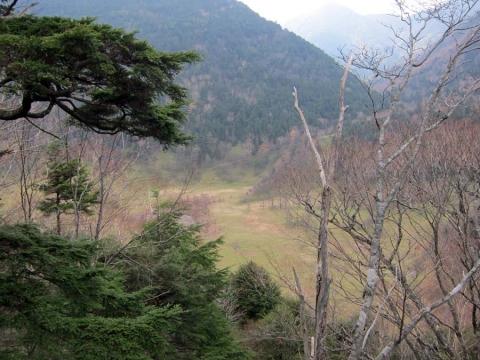 35山王峠下の湿原