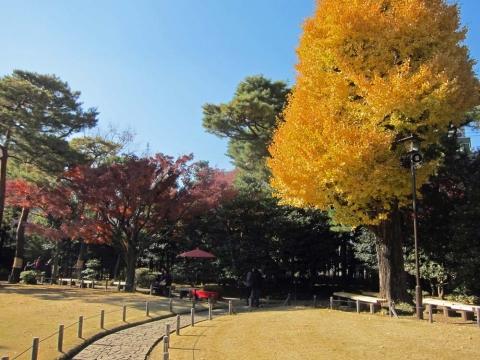 殿ケ谷戸庭園2