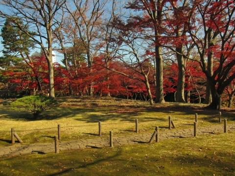殿ケ谷戸庭園4