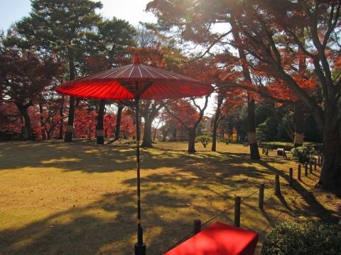 殿ケ谷戸庭園1