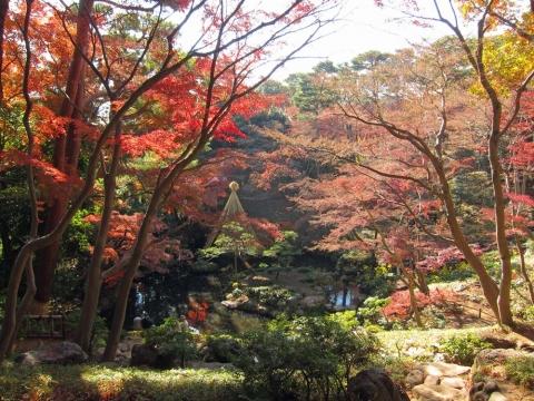 殿ケ谷戸庭園10