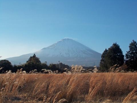 御殿場の富士山1 - コピー