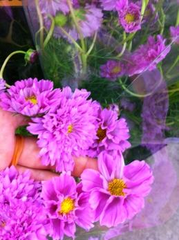 fc2blog_2013081915251013e.jpg