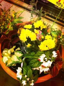 fc2blog_20130825181945b39.jpg