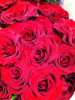 fc2blog_20130920190604e31.jpg