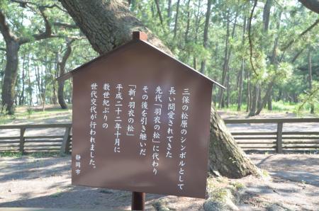 20130712三保の松原17