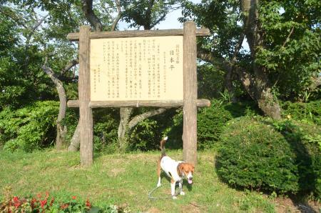 20130712日本平05