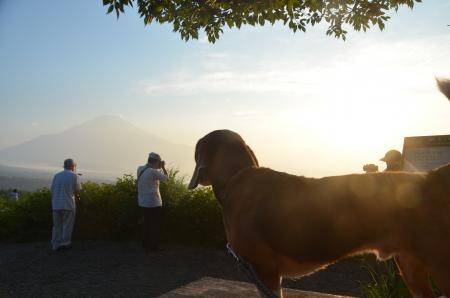 20130711山中湖パノラマ台06