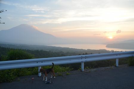 20130711山中湖パノラマ台12