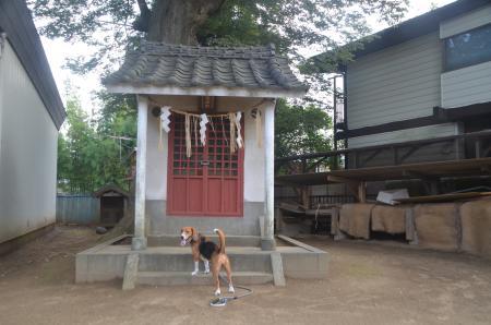 20130728妙見神社09