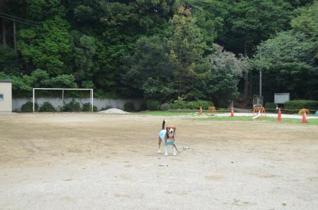 20130802平塚分校23