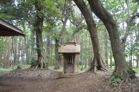 20130802鳥見神社・白井平塚05
