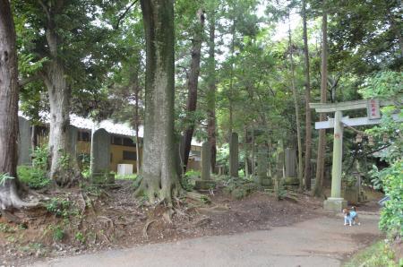 20130802鳥見神社・白井平塚03