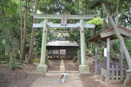 20130802鳥見神社・白井平塚01
