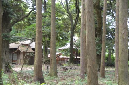 20130802鳥見神社・白井平塚08