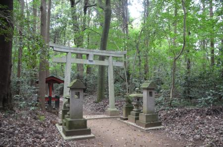 20130802鳥見神社・白井平塚13