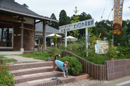 20130802印旛学舎オソロケ倶楽部15