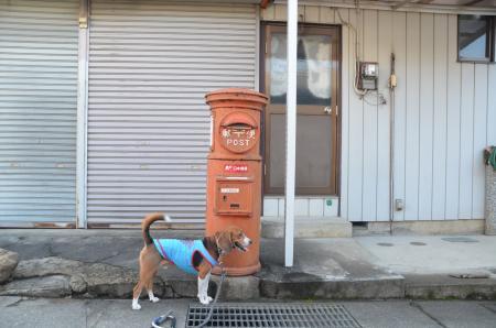 20130807丸ポスト上野原06