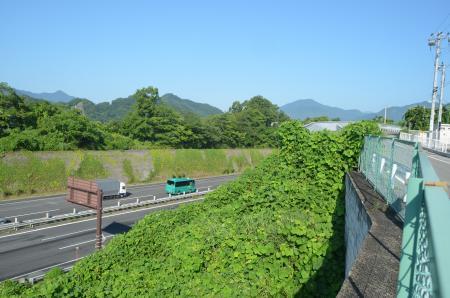 20130807上野原城址08