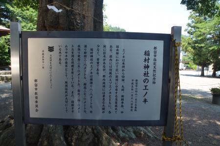 20130807尾県学校08