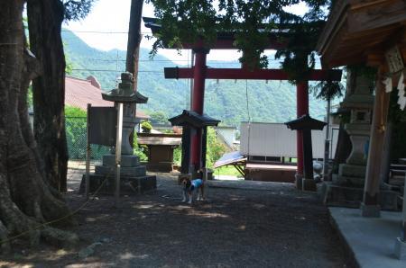 20130807尾県学校15