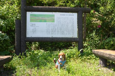 20130807長峰砦跡02