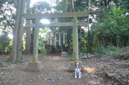 20130822鳥見神社・印西小倉02