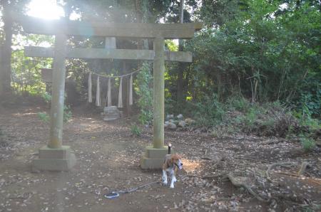 20130822鳥見神社・印西小倉01