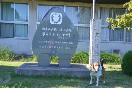 20130827沢小学校05