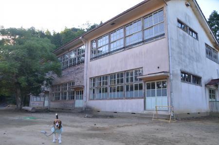 20130827興新小学校17