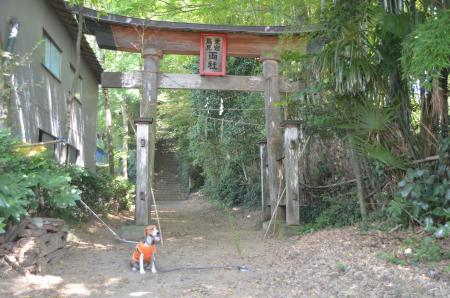 20130902鳥見神社・笠神04