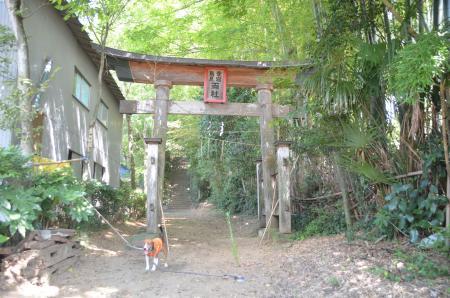 20130902鳥見神社・笠神02