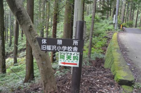 20130906丸太の森04