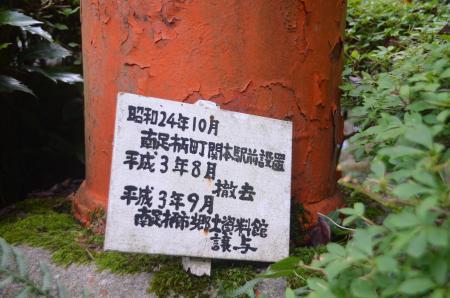 20130906丸太の森02