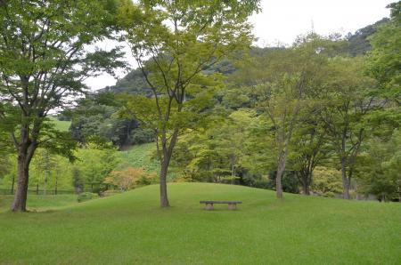 20130906ダム広場公園21