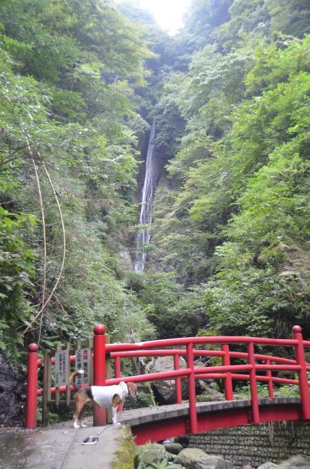20130906酒水の滝06