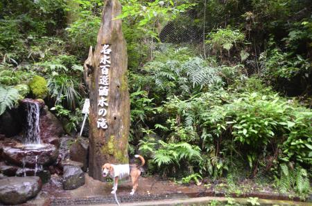 20130906酒水の滝04