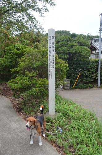 20130911鳥見神社柏金山01