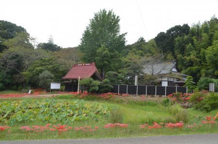 20130930結縁寺16
