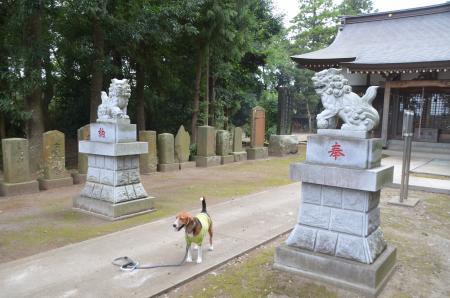 20130930宗像神社 印西戸神06