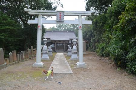 20130930宗像神社 印西戸神03
