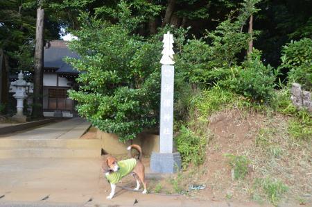 20130930宗像神社 印西船尾01