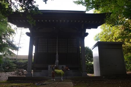 20130930鳥見神社 白井富ヶ谷07