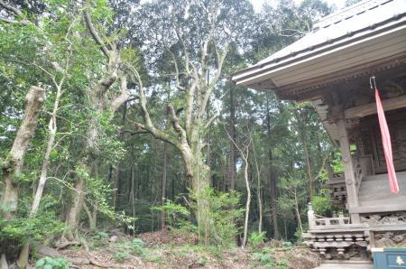 20131007宗像神社 白井・清戸10