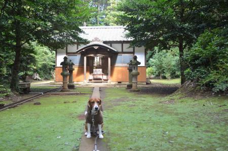 20131007宗像神社 印西・鎌苅05